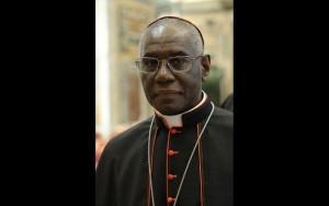 """Đức Hồng Y Sarah phản đối việc """"đóng gói"""" Mình Thánh Chúa để tín hữu mang về tự rước lễ"""
