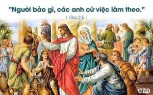 Ngày 19-06-2020 Đức Tổng Giám mục Giuse sẽ phong chức Linh mục cho Thầy phó tế Giuse Lê Hoàng Tuấn